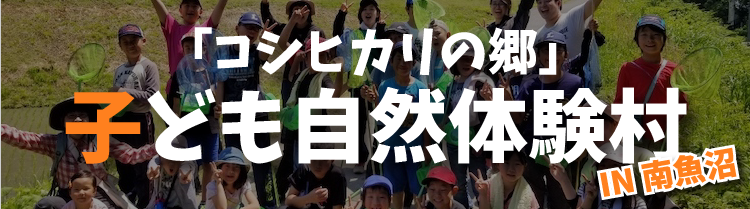コシヒカリの郷子ども自然体験村ブログ