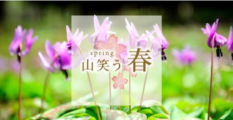 spring 山笑う春